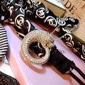 Дизайнер Стерлингового Серебра Способа 925 Ювелирные Изделия Платина Покрыли 3А Цирконий Партия Пантера Ожерелье