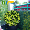 Fencing For Garden G0602A006 Artificial Boxwood Hedge Panels Plastic Privacy Ivy Fence Fake Plants