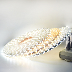 Image 4 - LED רצועת אור עמיד למים LED קלטת AC 220V SMD 5050 60 נוריות/m גמיש LED אורות לסלון חדר חיצוני תאורה עם האיחוד האירופי Plug