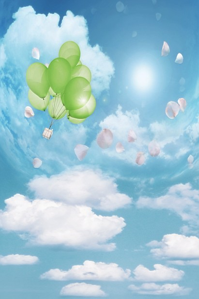 300Cm*200Cm(About 10Ft*6.5Ft) Backgrounds Flying Balloons Scattered Petals Photography Backdrops Photo Lk 1585 300cm 200cm about 10ft 6 5ft backgrounds plush blanket windows leaves photography backdrops photo lk 1492