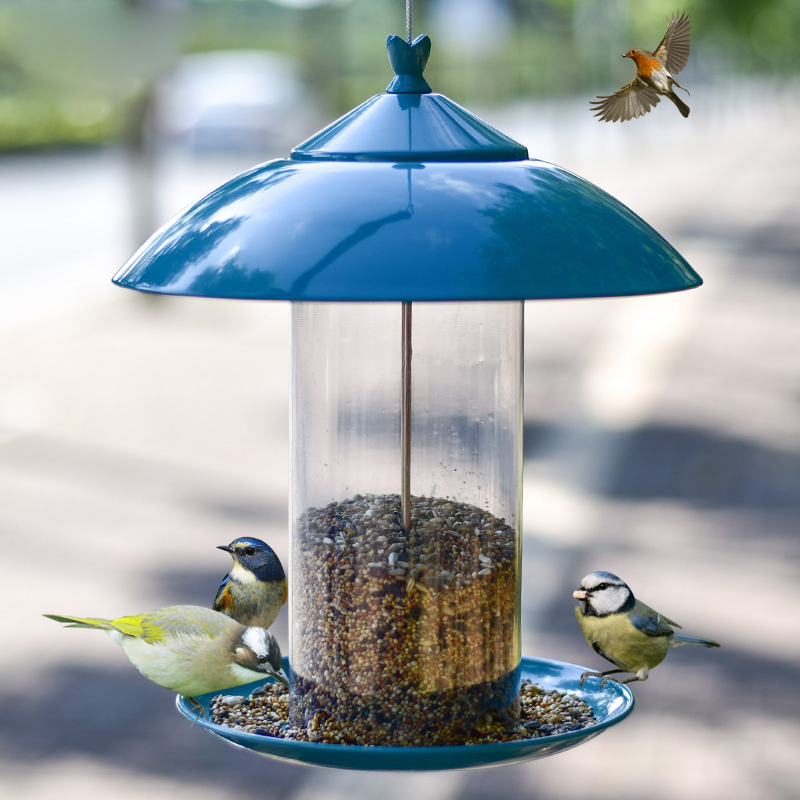 Mangeoire pour oiseaux communauté jardin alimentation automatique Pigeon perroquet moineau mangeoire pour oiseaux ZP4011511