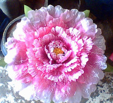 Peony props peoperties dance peony 60 cm show props flower large
