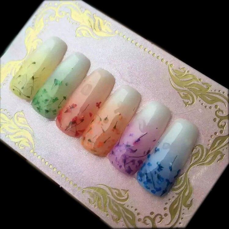 Nieuwe Collectie 6 Kleuren Real Dry Uv Gel 3d Nail Art Bloem Uv Gel