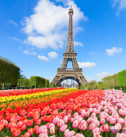 LIFE MAGIC BOX Seamless Wrinkle Free Washable Scenery Backdrops Tower Backdrops Flower Backgrounds