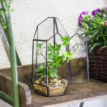Tabletop Succulent Plant Terrarium Decorative Prismatic Glass Geometric Terrarium Glass Centerpiece Planter Flower Pot with Door
