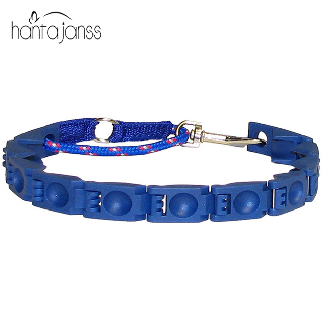the perfect dog command collar