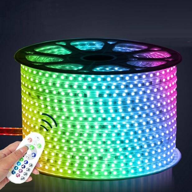 220V LED Strip 5050 50m 100m IP67 Waterproof RGB Dual Color Rope lighting for outdoor with RF Remote controller by DHL 5m dc12v 5050smd 150leds ldp6803 ic magic dream color ip66 silicone waterproof flex led strip 133 programs rf remote controller