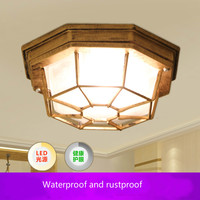 110V/220V waterproof vintage bathroom ceiling light moistureproof Ceiling Light Balcony outdoor lamp LED Bulb Include