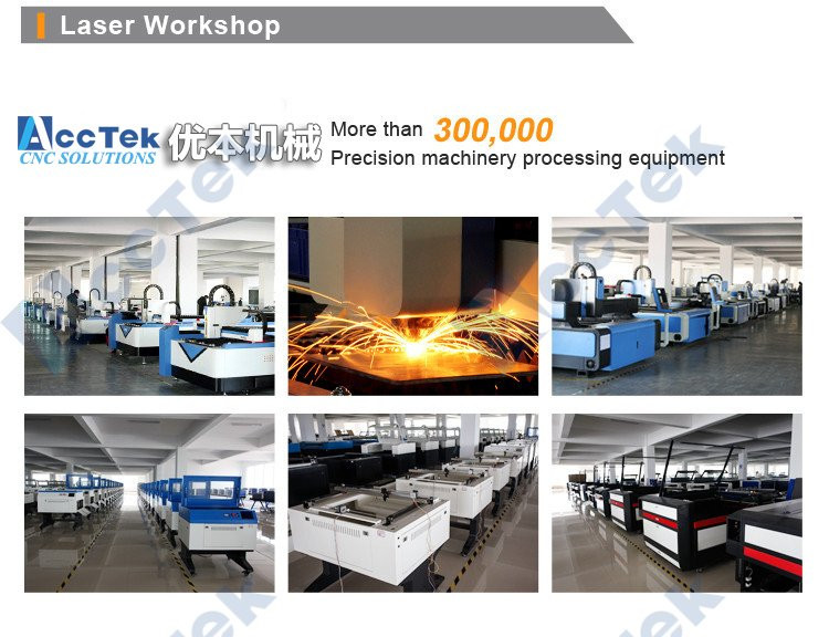 300W 500W Laser Cutting Machine 1325, CE FDA Standard Fiber Laser Cutting Machine