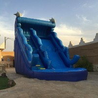 2016hot Sale Inflatable Water Slides For Sale
