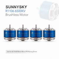 4pcs SUNNYSKY R1106 6500KV 1 2S Brushless Motor for 60 70 80 90 Micro FPV Racing Drone Quadcopter Helicopter Servo Motor Parts