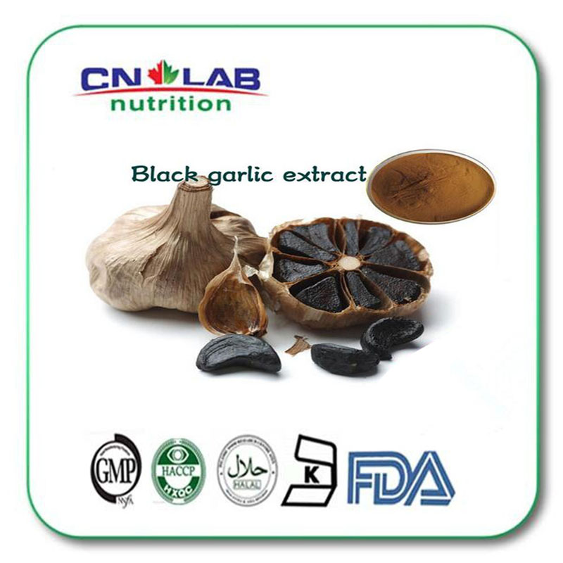 1000g Anti-cancer black garlic extract For Health hot sale with best price
