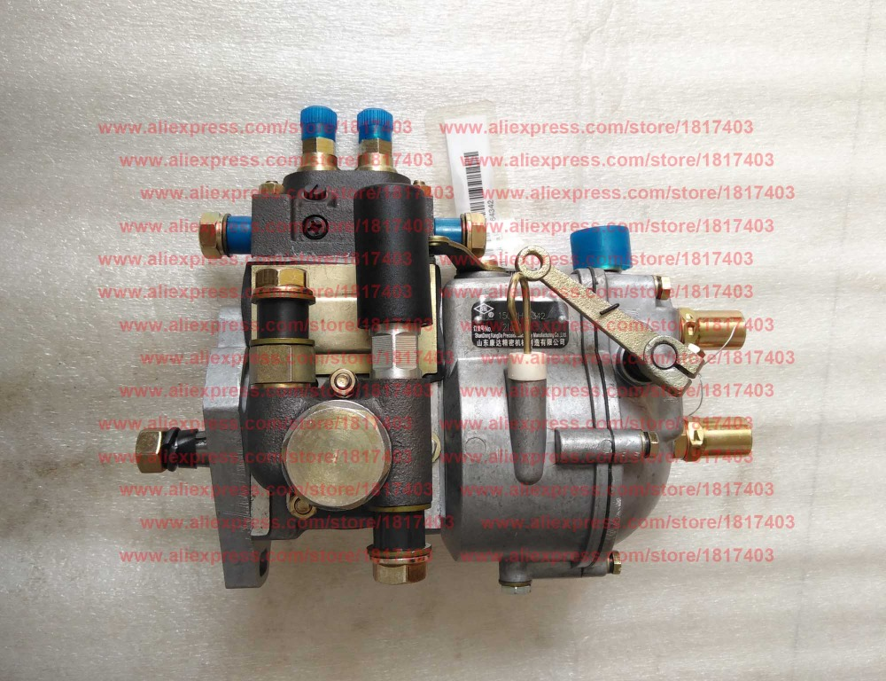 2IJ01a or 21J01a Injection pump Taishan Tractor Parts TS254