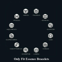 FirstQueen 925 Sterling Silver 12 Zodiac Essence Star Sign Bead Fit Brand Charms Silver 925 Original Essence Bracelets