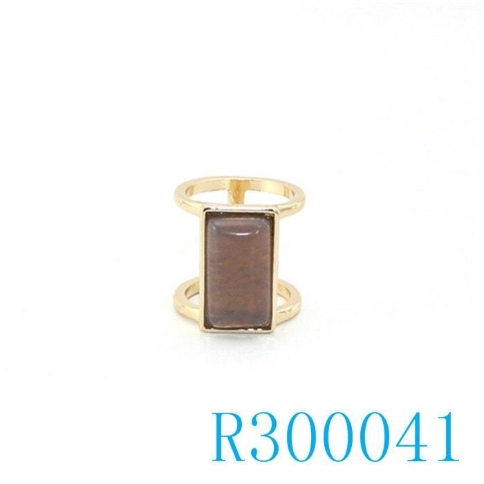 R300041