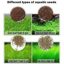 Купить с кэшбэком Aquarium Plant Seeds Water Aquatic Green Water Grass Decoration Easy Planting Fish Tank Landscape Ornament
