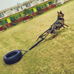 Image 5 - Poids de chien tirant le harnais fort en Nylon animaux de compagnie harnais pour berger allemand K9 grands chiens agilité produit produits de formation de chien