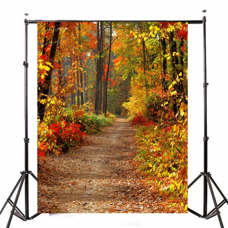 5X7FT Vinyl Autumn Fall Forest Photography Background photo Studio Props Photography Backdrop 1.5X2.1m waterproof русалочка