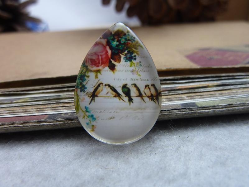 6pcs 18x25mm Handmade Photo Teardrop Glass Cabs Cabochons (bird) GDA5-11