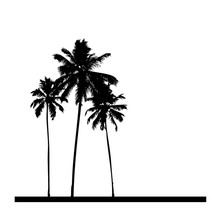 Popular PVC Waterproof Three Black Palm Trees Wall Sticker Home Decor For Living Room Wallpapers For
