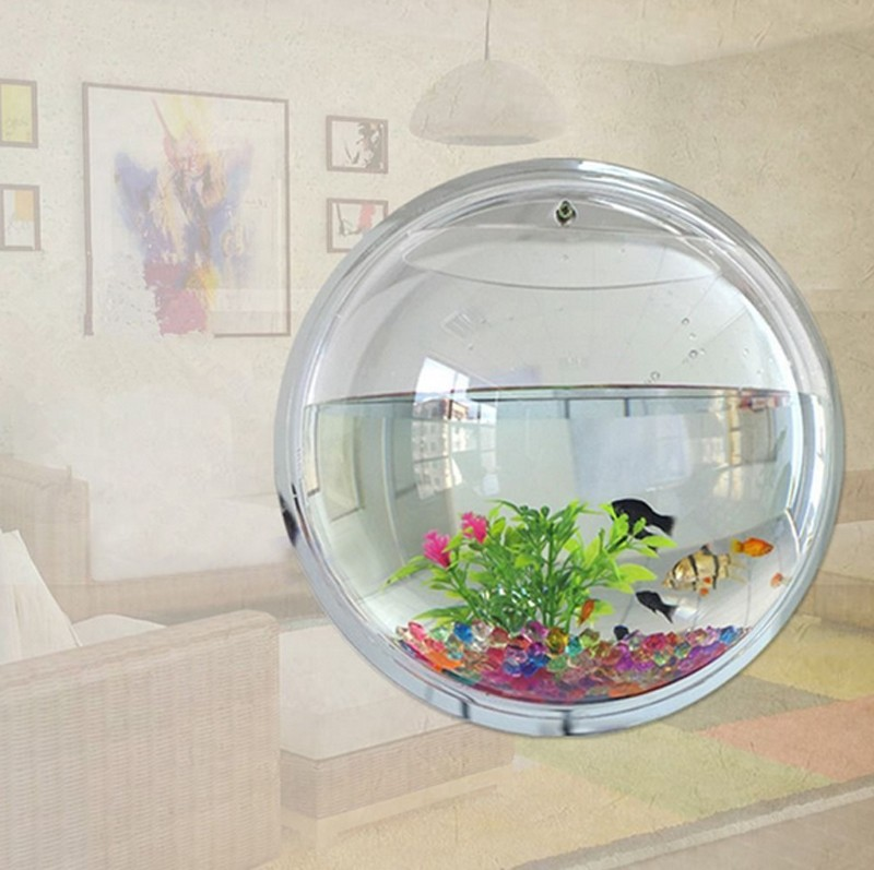 Mini Transparent acrylic Fish Tank Round Hanging Aquarium Indoor ...