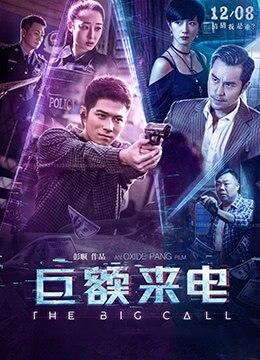 《巨额来电》2017年中国大陆,香港剧情,犯罪电影在线观看