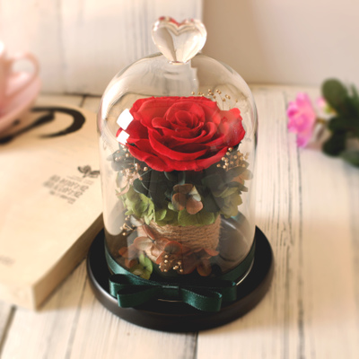 Elegant Glass Cover Fresh Preserved Rose Flower Wedding Home Decorations Birthday Gifts Beautiful Immortal Eternal