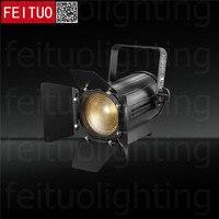 Новый 2 шт./лот Spotlight 100 W Светодиодный Studio Френеля мини прожектор теплый и холодный белый или RGBW 4IN1 для студии Камера фото