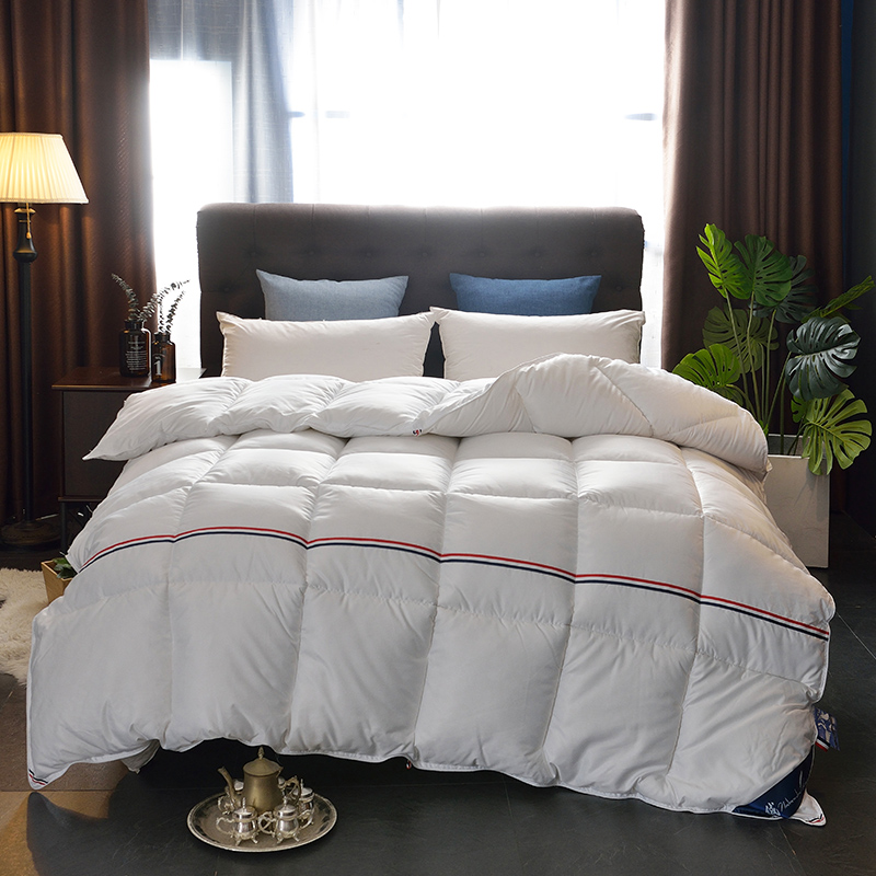 95% Goose Down Duvet Warm Winter Autumn Fall Use Comforter Full Twin Queen King Size Quilt White Pink Yellow Silver Home Textile
