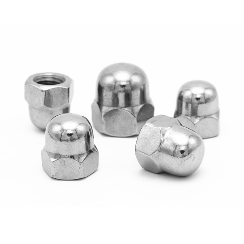 25Pcs 1/4 inch - 20 Stainless Steel Dome Head Cap Acorn Hex Nuts 25Pcs camp pro nuts 1 4