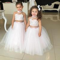Blush Pink Puffy Tulle Ball Gown Two Piece Lace Appliques Flower Girl Dress Halter Floor Length