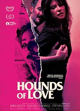 《爱的猎犬》2016年澳大利亚剧情,犯罪,惊悚电影在线观看
