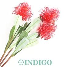 INDIGO- 3pcs Red Leucospermum Cordifolium Hydrangea Nutans Flower Wedding Floral Event Party Table Free Shipping