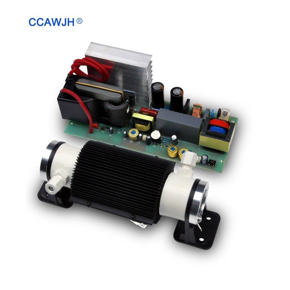 3g 5g 6g 7g Ozonizador AC110V 220V DC12V 24V Ceramic Tube Ozone Generator with Potentiomenter Water