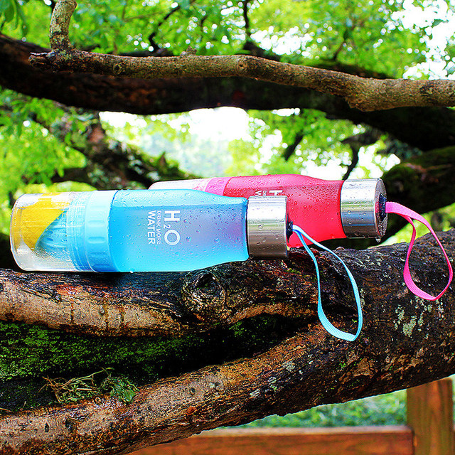 Fruit infusion 650ml plastic Water Bottle