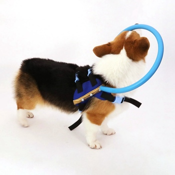 blind-pet-anti-collision-ring-collar-safe-halo-harness-for-blind-dogs-scorpion-cataract-animal-protection-circle-guide-dog