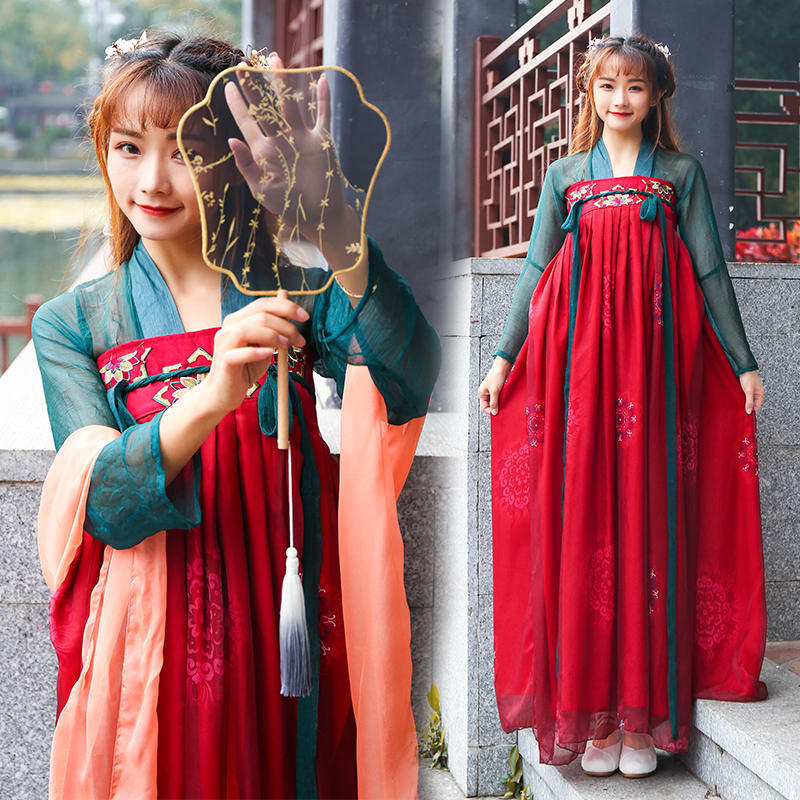 2019 nouveau Hanfu femmes chinois danse folklorique Costumes Qing Tang Costume dynastie Costume chinois Hanfu traditionnel chinois robe DWY1161