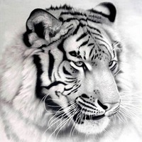 크로스 스티치 키트 흑백 호랑이 동물 광장 다이아몬드 그림 이미