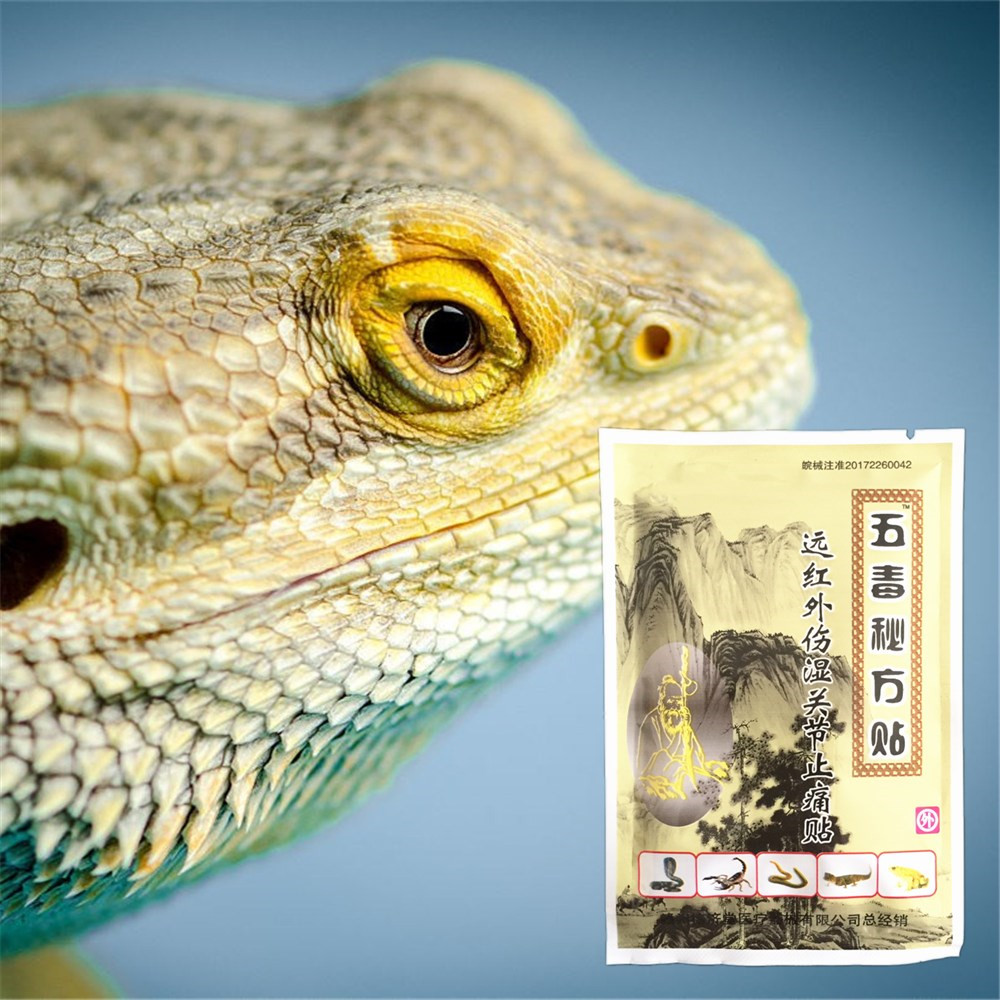 Essential-Oil Venom Pain-Relief Arthritis Patch Lizard Back-Rheumatic MIYUELENI 8pcs/Bag