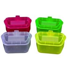 Earthworm Transparent Color Box