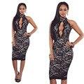 Womens Sexy Black Lace Embroidery Sleeveless Knee Length Sheath DRess Clubwear Clothes