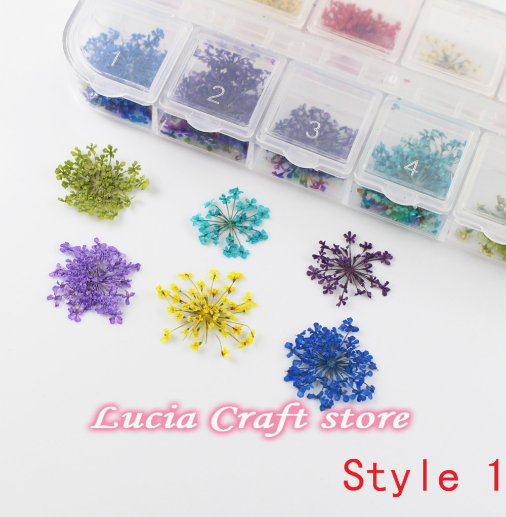 Small flowers for crafts - 12 Colors Dried Flowers Nail Art Crafts Diy Tips With Case Small Flowers Nails Tools Decorations 083004001