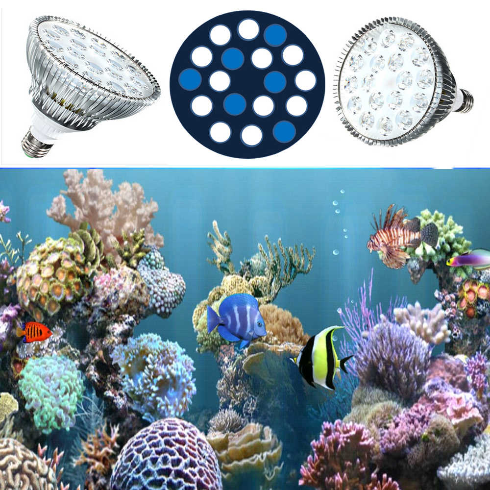54W PAR38 LED Aquarium Lights E27 12 White 12000K 6 Blue 450nm Plant Grow Bulb for Saltwater Reef Refugium Tanks