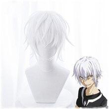 Toaru Majutsu Hiçbir Endeksi Hızlandırıcı Cosplay Peruk Adam için Erkek 30 cm Kısa Düz Anime Peruk Isıya Dayanıklı Sentetik Saç beyaz