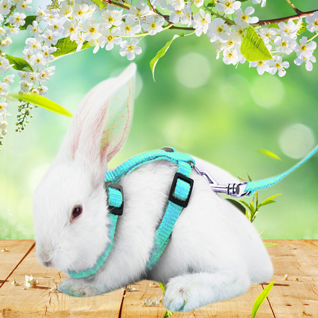 Rabbit Harness Leash Adjustable Rabbit Leash For Guinea Pigs Small