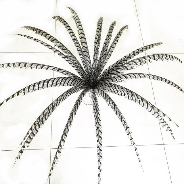 Hotsale 10 adet 80 100 cm uzun Sülün Tüyleri Doğal Zebra Sülün Kuyruk Tüyleri Samba Tüy Lady Amherst Sülün tüyler