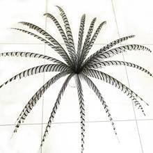 Hotsale 10 stuks 80 100 cm lange Fazantveren Natuurlijke Zebra Fazant Staart Veren Samba Veer Lady Amherst Fazant veren