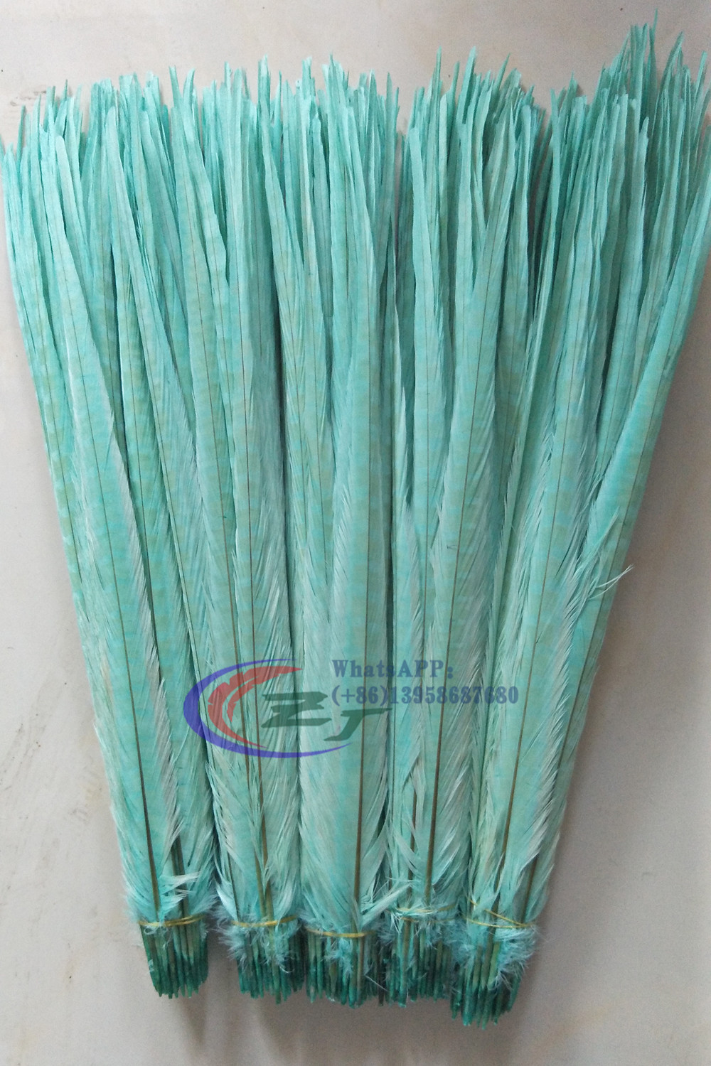 Free shipping 200pcs lot Mint Green colors 50 55cm 20 22 Dyed Pheasant Feathers Pheasant Plumes