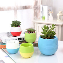 2019 Newest Hot Cute Mini Garden Round Plastic Plant Flower Pot Garden Colourful Home Office Decor Planter Storage(China)