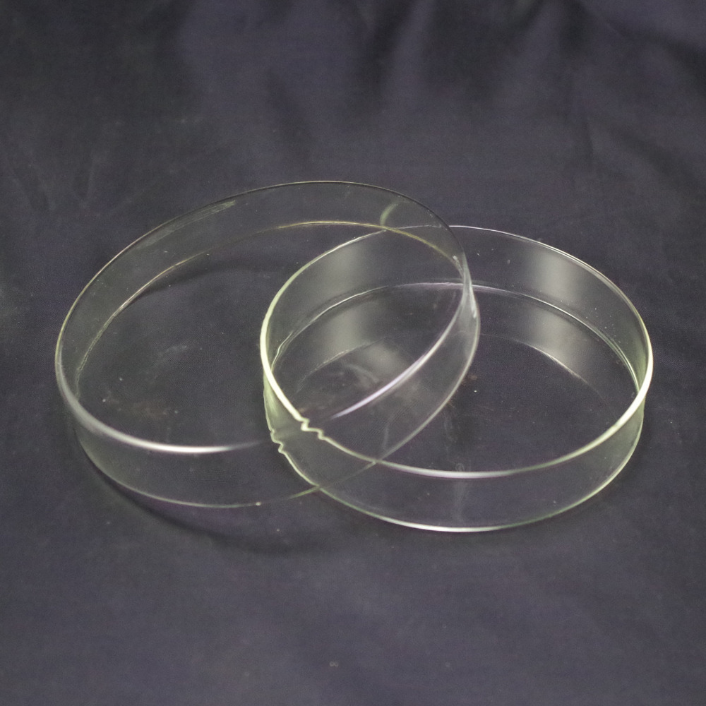 100mm Petri Dishes With Lids Clear Glass 1pcs